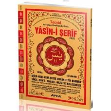 Ayfa Yayınları Rahleboy 41 yasin Tecvidli 4 Renk 144 sayfa karşılıklı mealli