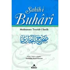 Sahihi Buhari Muhtasarı Tecridi Sarih (Ciltli)