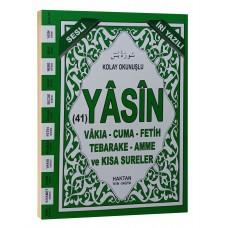 Haktan Yayınları Çanta boy 41 Yasin-i şerif Sadece ARAPÇA İRİ YAZILI Yeşil